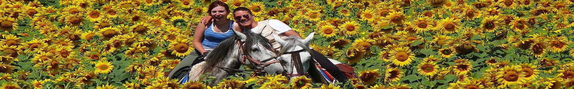 paardrij - vakanties - ruiterreis - wereldwijd - ruiterreizen - paardrijvakanties - Paardrijvakantie - Spanje - Scenic Travel
